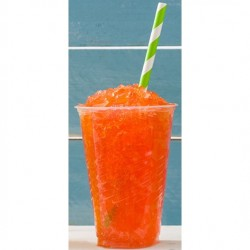 Sugar-Free Slush Syrup (2 Flavours Available)